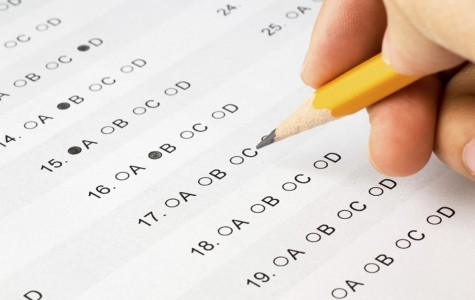 Semester Test- Opinion