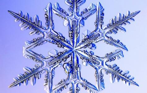 Winter Formal Breaks The Ice
