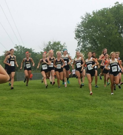 Glenwood Cross Country Results