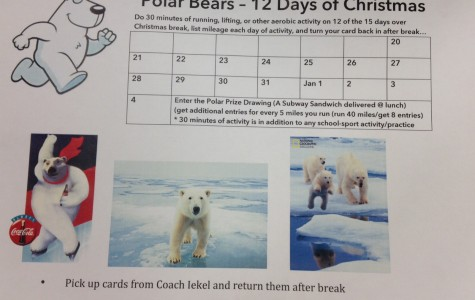 Polar Bears – 12 Days of Christmas