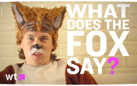What Does the Fox Say? 1Q 25 A
