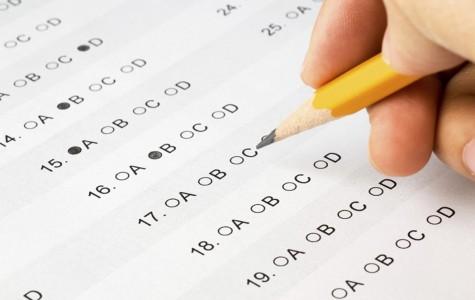 Semester Test- Opinion