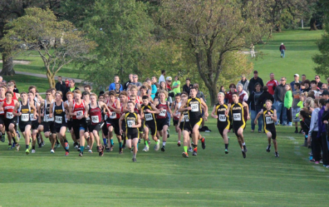 Cross Country Places Well in Shenandoah