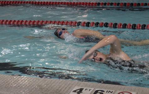 Swim Team Competes at Regionals