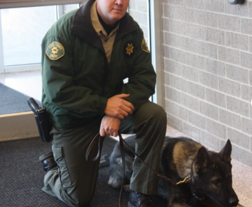 Drug Dog Searches