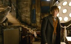 """Fantastic Beasts"" is Back — Review"