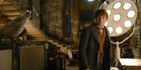 """Fantastic Beasts"" is Back -- Review"