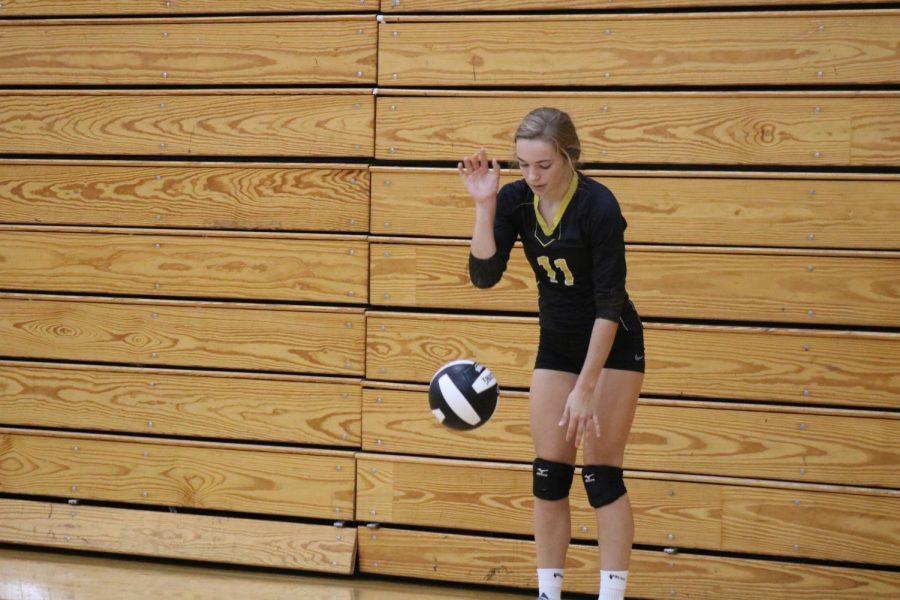 Junior Caroline Pellett prepares to serve the volleyball. On Saturday, Pellett had nine kills and 19 digs.