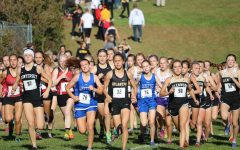Boys and Girls XC Stomp Out Competition