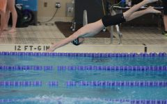 2019-20 Boys Swimming Preview