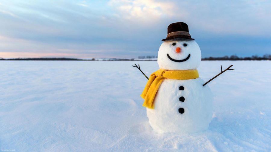 8.+Build+a+Snowman