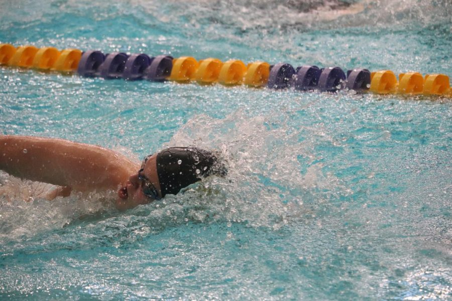 Junior Bryan York swims at a competition in Johnston last winter. This year their first competition was held at Boone High School where they earned fifth place.