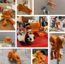 Many Orange Frog stuffed animals are found around the school, displayed in many ways.